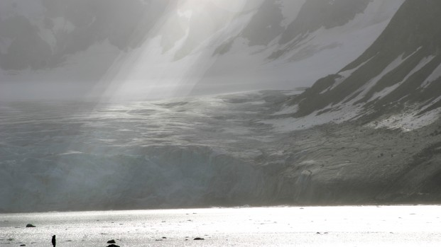 Pierre-Fijalkowski-Arctica-Nature-Spitzberg-201411-621×349