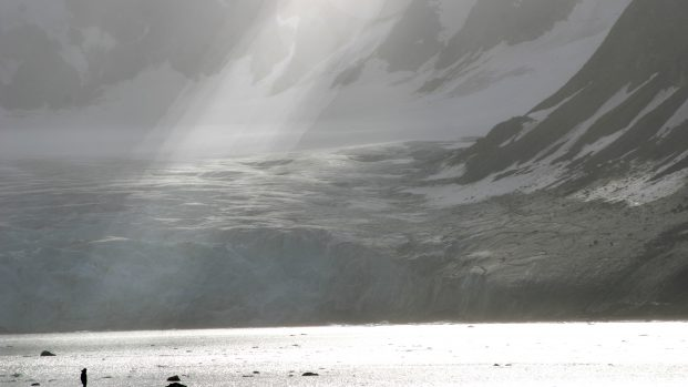 Pierre Fijalkowski – Arctica Nature Spitzberg 201411