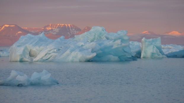 Pierre-Fijalkowski-Arctica-Nature-Spitzberg-2014141-621×349