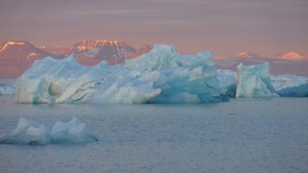 Pierre Fijalkowski – Arctica Nature Spitzberg 201414