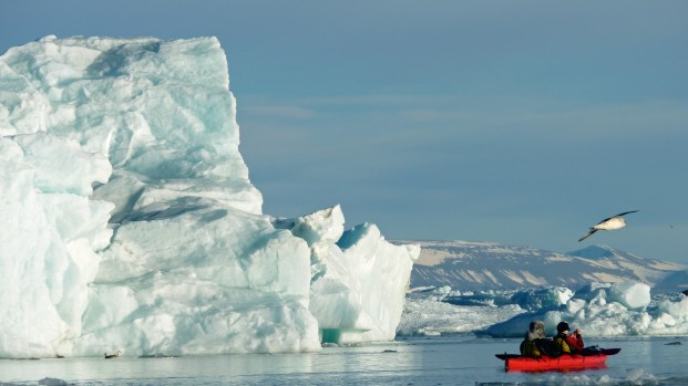 Pierre-Fijalkowski-Arctica-Nature-Spitzberg-201416-621×349